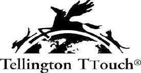 TellingtonTTouchServices